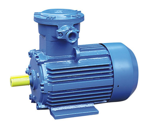 explosion proof induction motor