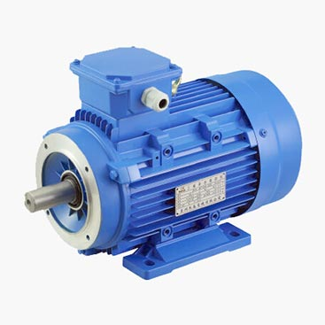 MS-Aluminum-3-Phase-Motors