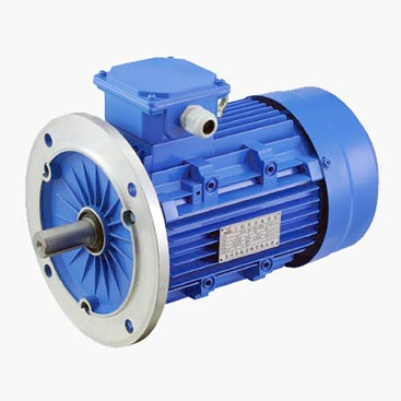MS-B5-Aluminum-3-Phase-Induction-motor