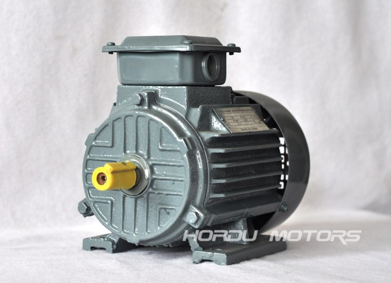 Y2-80M three phase induction motor