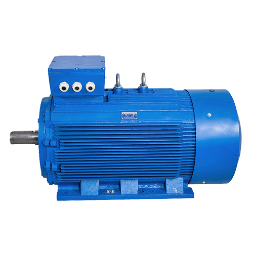 Large-electric-motor