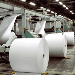 Paper-&-Forest-industry