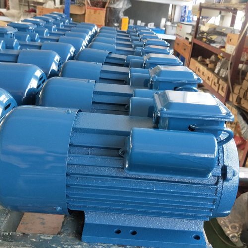 YL-90L-2 Double Capacitor Induction Motor samples